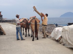 donkey alicudi aeolian islands sicily italy