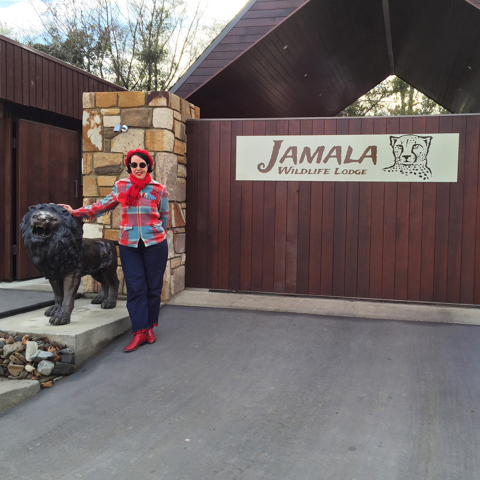 Going on safari at Jamala Wildlife Lodge